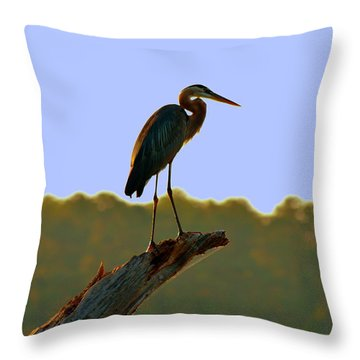 Sitting High On The Log Throw Pillow