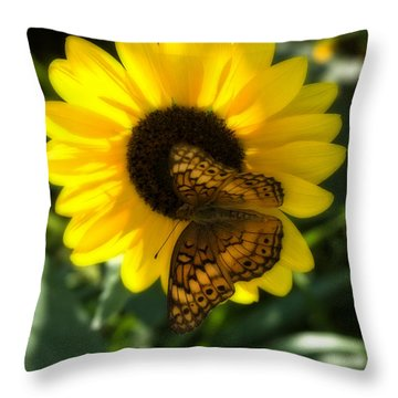 Sitting On The Sun Throw Pillow