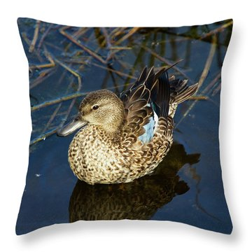 Throw Pillow featuring the photograph Sitting Pretty by Arthur Dodd