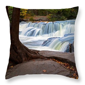 Throw Pillow featuring the photograph Sitting Quietly by Heather Kenward