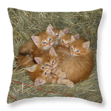 Six Kittens Throw Pillow