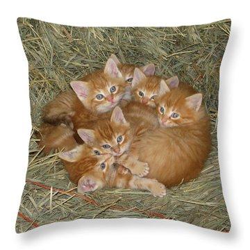 Six Kittens Throw Pillow