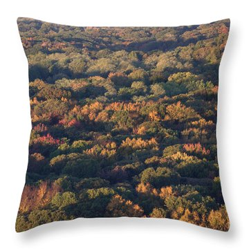 Sixteen Stories Up In Autumn Throw Pillow