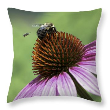 Size Matters Throw Pillow by Andrea Silies