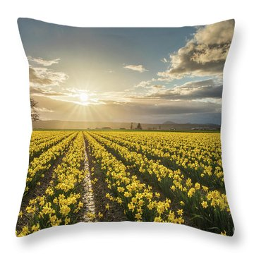 Throw Pillow featuring the photograph Skagit Daffodils Bright Sunstar Dusk by Mike Reid