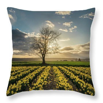 Throw Pillow featuring the photograph Skagit Daffodils Lone Tree  by Mike Reid