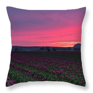 Throw Pillow featuring the photograph Skagit Valley Burning Skies by Mike Reid