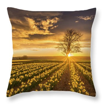 Throw Pillow featuring the photograph Skagit Valley Daffodils Sunset by Mike Reid
