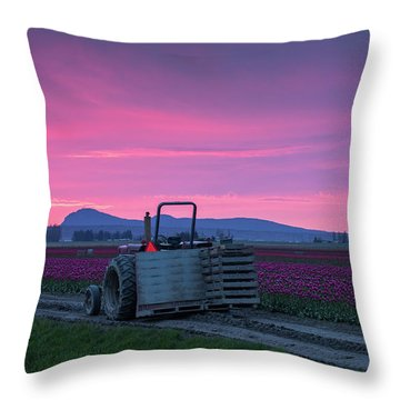 Throw Pillow featuring the photograph Skagit Valley Dusk Calm by Mike Reid