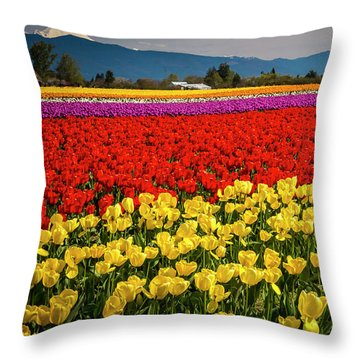 Skagit Valley Tulips  Throw Pillow