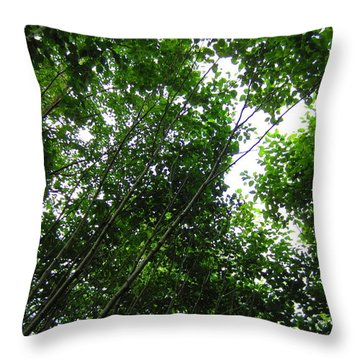Skagway Green Throw Pillow