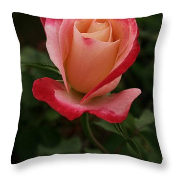 Skc 0435 Nature's Color Shading Throw Pillow by Sunil Kapadia