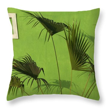 Skc 0683 The Nature Outside Throw Pillow by Sunil Kapadia