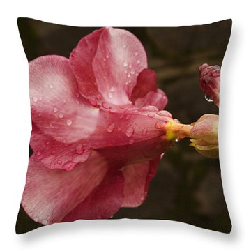 Skc 3253 The Shades Of Allamanda Throw Pillow by Sunil Kapadia