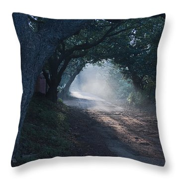Skc 4671 Road Towards Light Throw Pillow by Sunil Kapadia