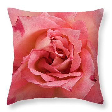 Skc 4942 The Pink Harmony Throw Pillow by Sunil Kapadia