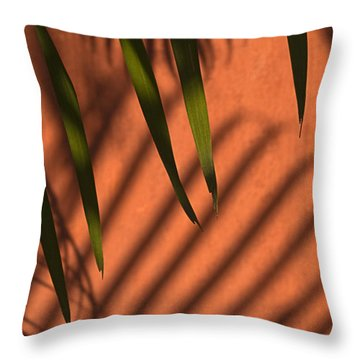 Skc 5521 Stripes Throw Pillow by Sunil Kapadia