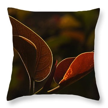 Skc 9841 Lovable Pair Throw Pillow by Sunil Kapadia
