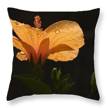 Skc 9937 The Grace Of Hibiscus Throw Pillow by Sunil Kapadia