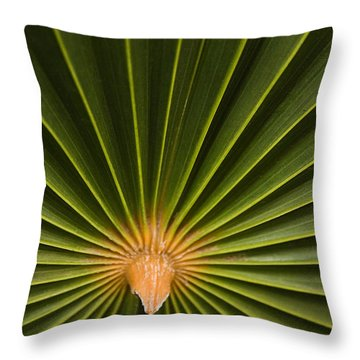 Skc 9959 The Palm Spread Throw Pillow