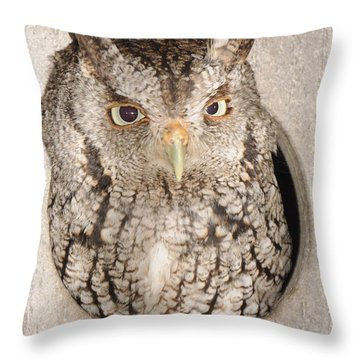Skreech Owl Throw Pillow