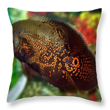 Throw Pillow featuring the photograph Skeeter by Betty Northcutt