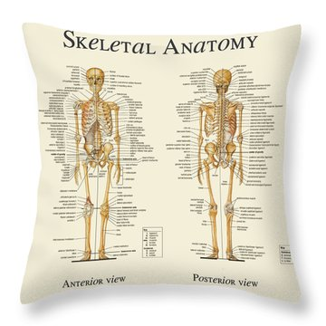 Throw Pillow featuring the digital art Skeletal Anatomy by Gina Dsgn