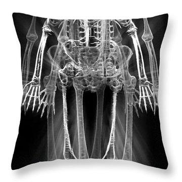 Skeletons - X-ray Throw Pillow