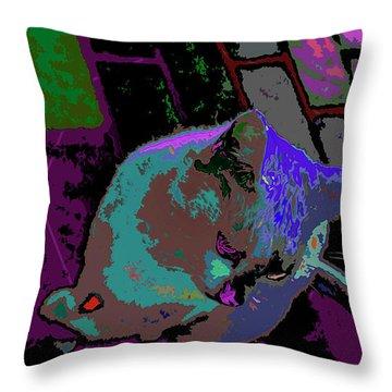 Skid Row Kitten Throw Pillow