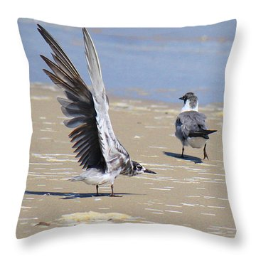 Skiddish Black Tern Throw Pillow