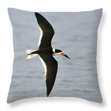 Skimmer In Flight Throw Pillow by Al Powell Photography USA