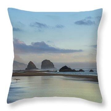 Skimming Along The Beach At Sunset Throw Pillow