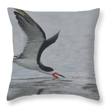 Skimming The Surface.... Throw Pillow