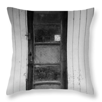 Throw Pillow featuring the photograph Skinny Door by Erin Kohlenberg