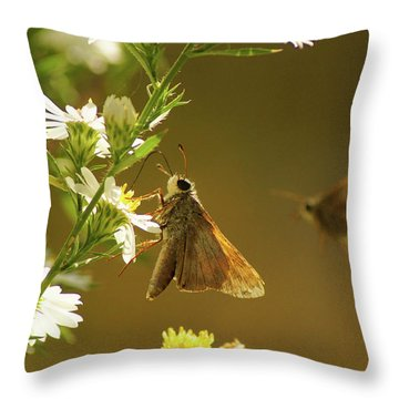 Skipper Date Throw Pillow by Thomas Bomstad