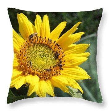 Skipping Spring Throw Pillow