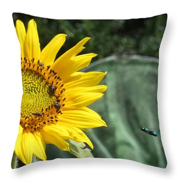 Skipping Spring Throw Pillow
