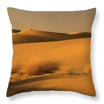 Skn 1124 The Desert Landscape Throw Pillow by Sunil Kapadia