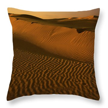 Skn 1127 The Golden Dunes Throw Pillow