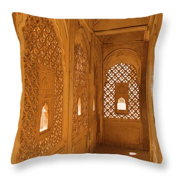 Skn 1241 Carved Niche Throw Pillow by Sunil Kapadia