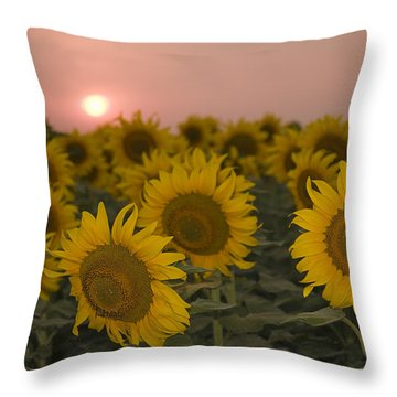 Skn 2178 The Sunflowers At Sunset  Throw Pillow by Sunil Kapadia