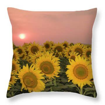 Skn 2179 Sunflower Landscape Throw Pillow