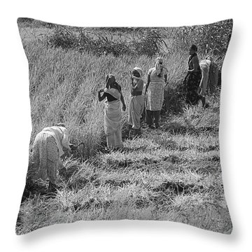 Skn 2611 Joint Effort Bw Throw Pillow