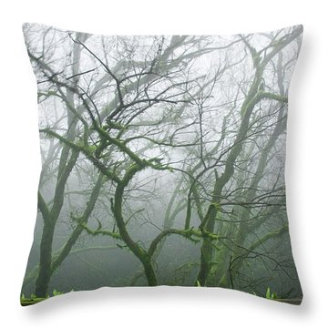 Skn 3720 Monsoon Landscape Throw Pillow