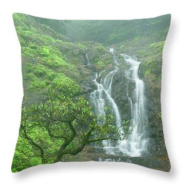 Skn 3758 Admiring Your Beauty Throw Pillow