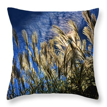 Sky Dusters Throw Pillow