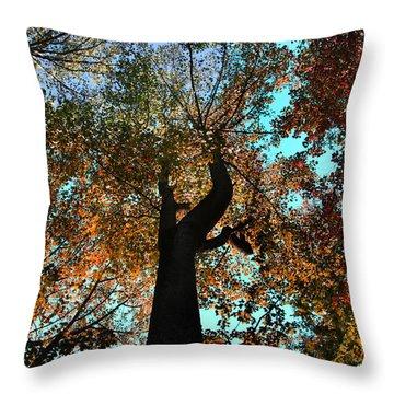 Sky Flower Throw Pillow by Joseph G Holland