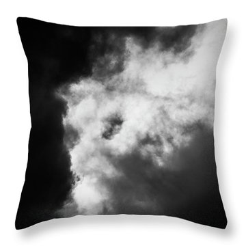 Throw Pillow featuring the photograph Sky Life Thunder  by Steven Poulton