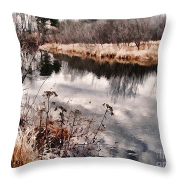 Throw Pillow featuring the photograph Sky Low by Betsy Zimmerli