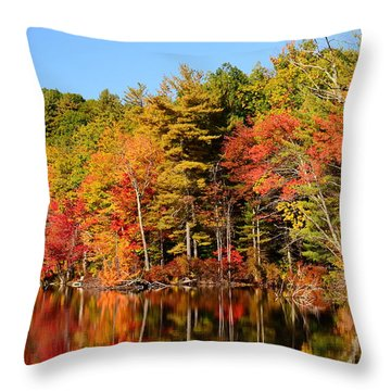 Sky Pond Throw Pillow